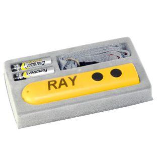 Электронная трость RAY