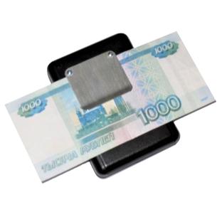 Говорящий определитель номиналов российских купюр Палитра-02У